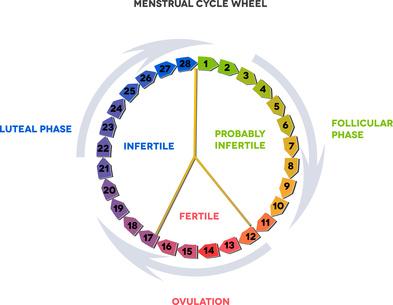 Gezinsplanning op natuurlijke wijze: voordelen ten opzichte van het gebruik van de pil
