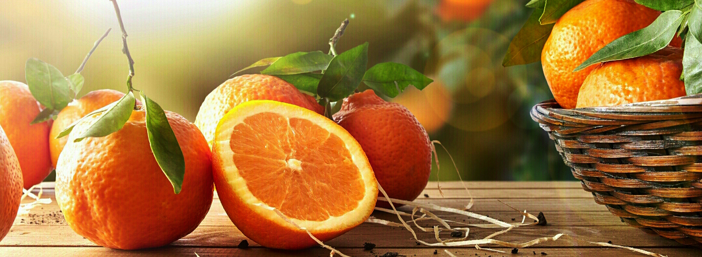 Doctor Pauling, why was he so famous? Vitamin C and its role as an anti-aging anti-oxidant.