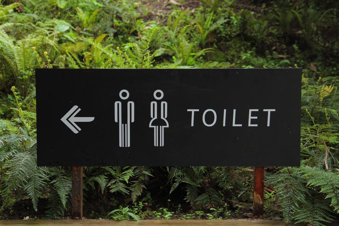 What causes diarrhea?