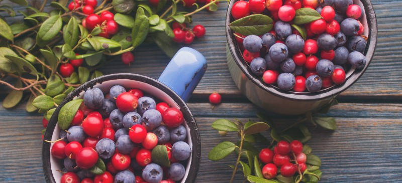 Leptin , leptin resistance and resveratrol