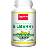 Bilberry + grapeskin 120 capsules - Zweedse bosbes, OPC, resveratrol, pycnogenol | Jarrow Formulas