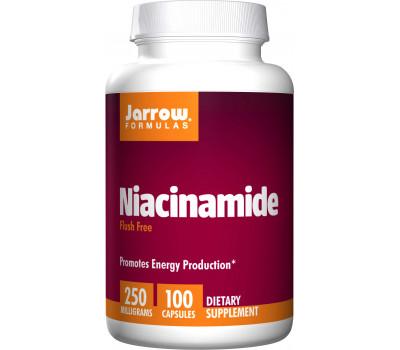 B3 - Niacinamide 100 caps - no flush form | Jarrow Formulas