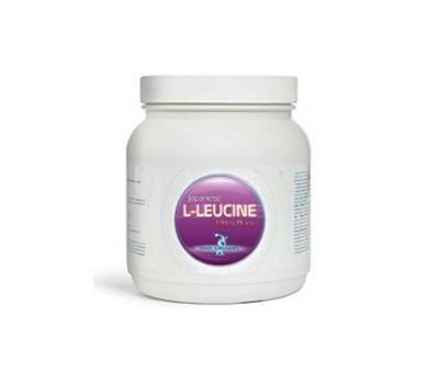 Leucine 400g | Power Supplements