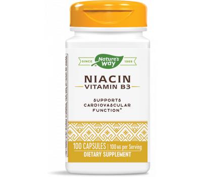B3 - Niacin 100 capsules- flush form | Nature's Way