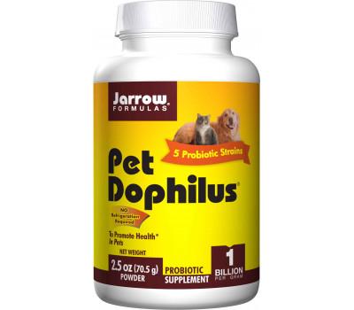 Pet Dophilus 70g powder  with 4 strains and 1 billion viable cells per gram | Jarrow Formulas