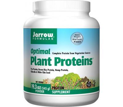 Optimal Plant Protein 540g - organic pea, rice & hemp with chlorella , chia & fibers | Jarrow Formulas