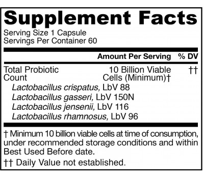 Fem Dophilus Women 10 billion 60 capsules - female probiotic with 4 strains found in the vaginal tract | Jarrow Formulas