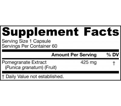 PomeGuard 60 capsules - pomegranate extract | Jarrow Formulas