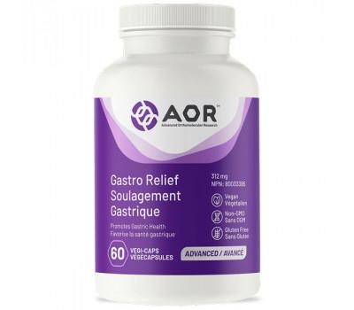 Gastro Relief 60 capsules - mastiek, zinkcarnosine en kaliumnitraat | AOR