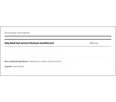 Holy Basil 60 capsules - ursolic acid and eugenol | AOR
