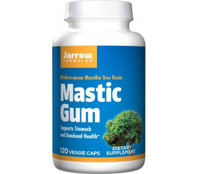 Mastic Gum 500mg 120 capsules grootverpakking - mastiek van Pistacia lentiscus | Jarrow Formulas