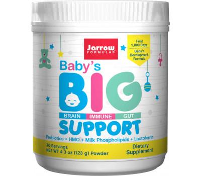 Baby's BIG Support 123 gram - comprehensive infant formula with phosopholipids, GOS, HMO and lactoferrine | Jarrow Formulas