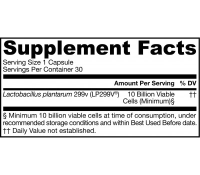 Ideal Bowel Support 10 billion 30 capsules - Lactobacillus plantarum | Jarrow Formulas